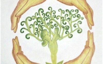 Il pavimento pelvico: la culla della nostra vita. Dott.ssa Maria Laura Bongiovanni